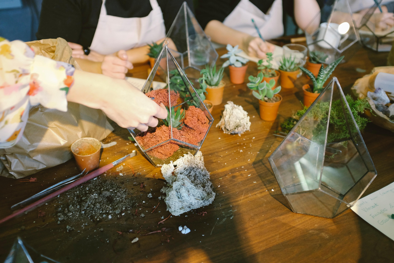 3 Fun And Creative DIY Activities For Parents And Children Terrarium (2)